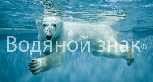 как нанести на фото водяной знак
