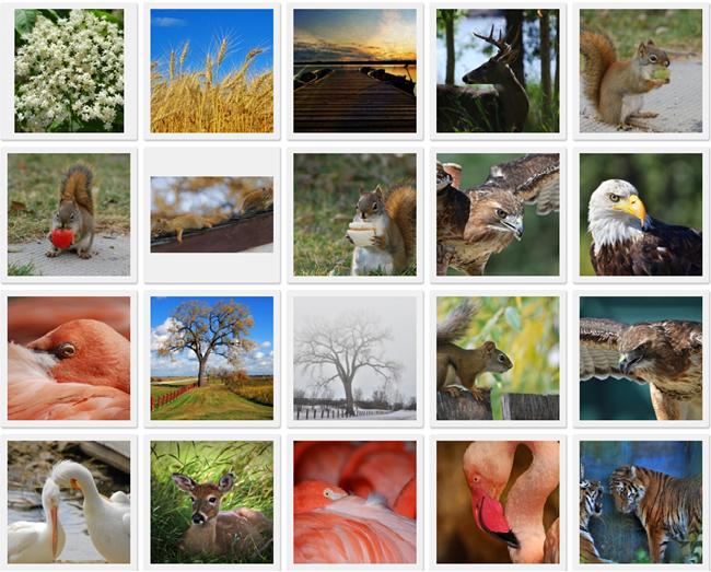 Качественные и бесплатные изображения для сайта.
