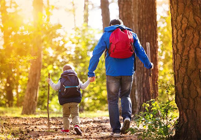 папа с сыном гуляет в лесу